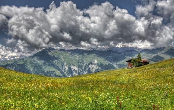 Картинка трава, пейзаж, цветы, горы, дом, луг