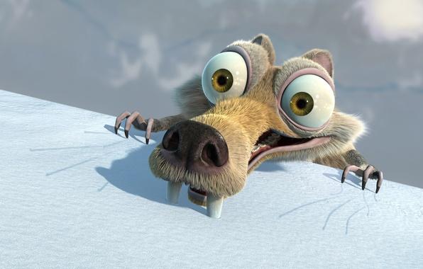 Фото обои фильм, белка, ледниковый период, Ice Age
