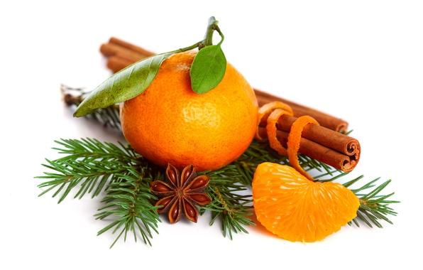 Картинка праздник, ель, ветка, Новый Год, Рождество, цитрус, корица, мандарин, бадьян, анис