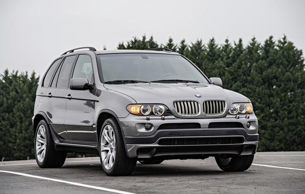 Фото обои бмв, BMW, кроссовер, E53