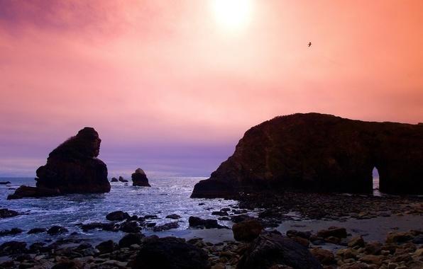 Картинка море, волны, камни, скалы, чайка