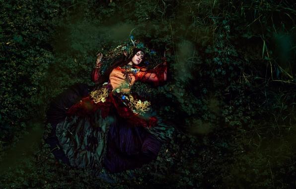 Картинка лес, листья, девушка, цветы, сон, платье, Forest