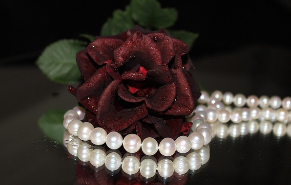 Картинка цветок, цветы, widescreen, обои, роза, ожерелье, жемчуг, бусы, wallpaper, украшение, красная роза, разное, широкоформатные, background, …