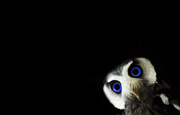 Картинка black, animals, minimalism, blue eyes, black background, owl