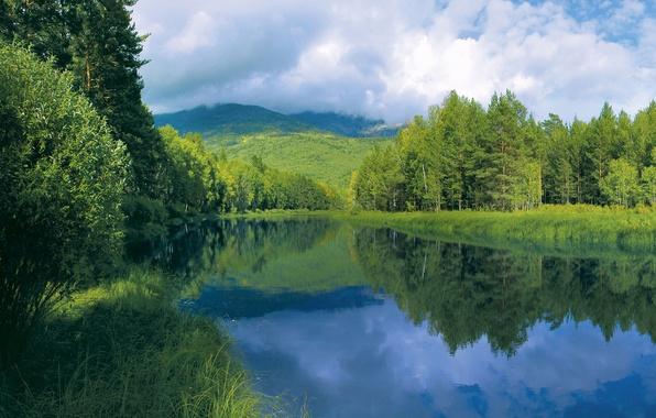 Картинка лето, небо, трава, вода, облака, деревья, гладь, отражение, река, холмы, берег, Лес