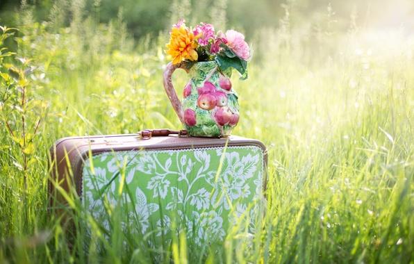 Картинка лето, трава, цветы, природа, чемодан, кувшин