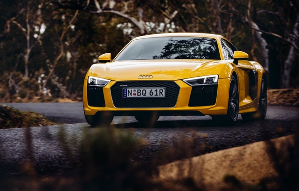 Картинка желтый, Audi, ауди, автомобиль, передок, V10