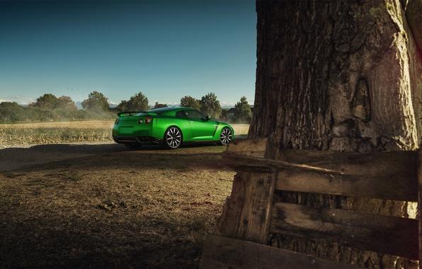 Картинка Nissan, GT-R, Car, Nature, Green, Beauty, Sport, Rear
