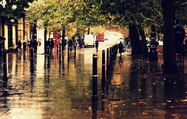 Картинка осень, город, дождь, улица