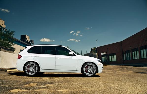 Картинка белый, bmw, бмв, white, wheels, диски, кроссовер, тонированный, e70, x5m