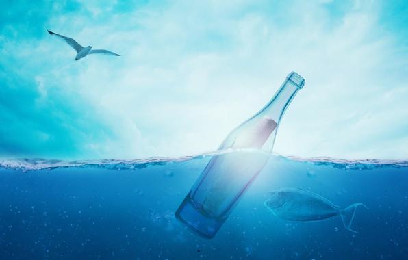 Картинка море, небо, вода, пузырьки, синева, птица, бутылка, рыбка, чайка, записка