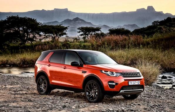 Картинка Land Rover, Discovery, Sport, дискавери, ленд ровер, 2015, HSE, ZA-spec, L550, Luxury Black Design Pack
