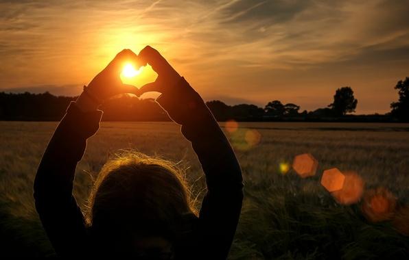 Картинка поле, девушка, солнце, лучи, деревья, любовь, закат, фон, widescreen, обои, настроения, сердце, руки, колоски, wallpaper, …