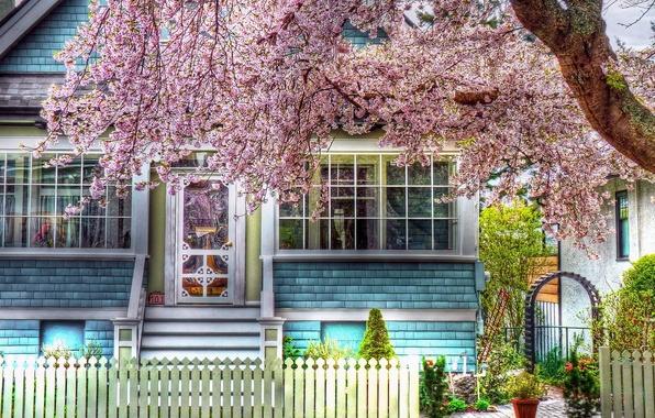 Картинка природа, дом, фото, дерево, цвет, HDR, весна, домик