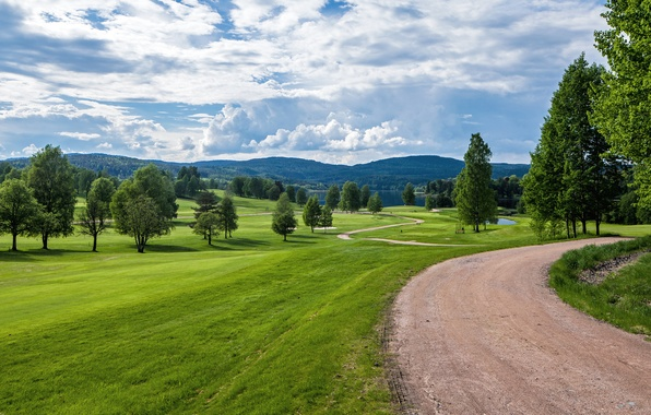 Картинка дорога, зелень, лето, небо, трава, облака, деревья, холмы, поляна, Норвегия