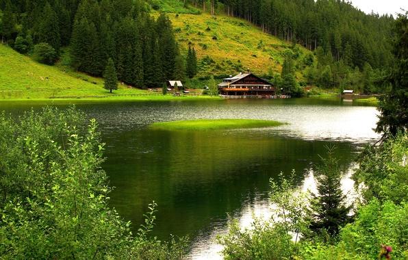 Картинка деревья, горы, природа, дом, река, лодки, пастбище.