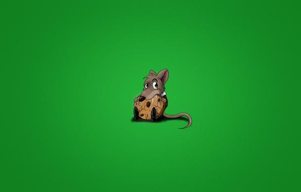 Картинка животное, минимализм, мышка, печенье, хвост, кушает, грызун, печенюшка, печенег, крыска, зеленоватый фон, печенюга
