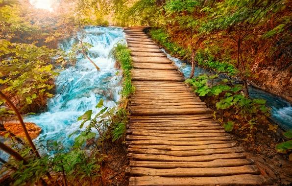 Картинка вода, мост, река, камни, водопад, красота, бревна, дорожка, мостик, горная