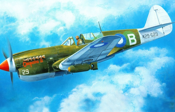 Картинка самолет, истребитель, арт, американский, Curtiss, Tomahawk, P-40, Warhawk, WW2., Kittyhawk