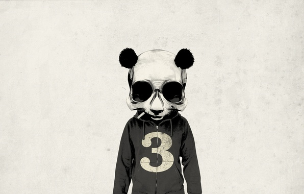 Картинка взгляд, пустота, фон, стена, животное, тело, человек, череп, минимализм, текстура, голова, арт, сигарета, панда, Rhys …