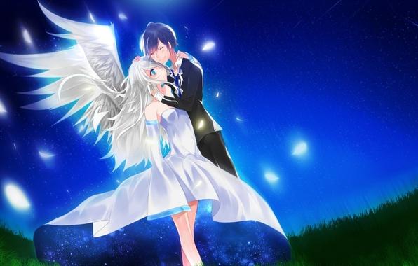 Картинка небо, девушка, звезды, ночь, крылья, аниме, перья, арт, парень, aoiken