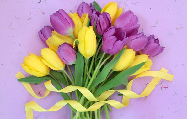 Картинка цветы, букет, лента, тюльпаны, fresh, yellow, flowers, tulips, purple