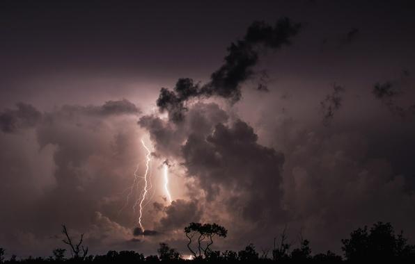 Картинка гроза, облака, деревья, ночь, тучи, молния, силуэт
