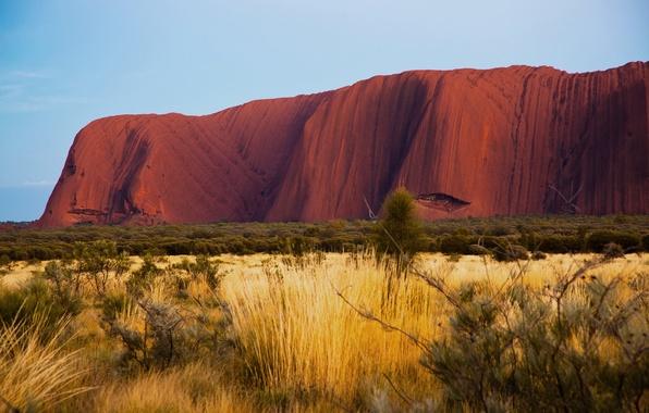 Картинка природа, пустыня, утро, Австралия, Улуру, Айерс-Рок, Uluru