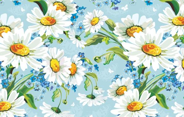 Картинка цветы, рисунок, ромашки, арт