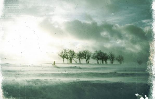 Картинка зима, грусть, деревья, Обработка