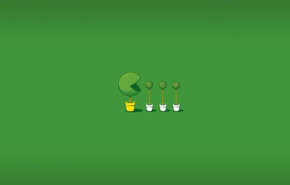 Картинка зелень, зеленый, игра, минимализм, прикол, горшки, кусты, pac-man, pacman, анимация, самшит, Глен Джонс