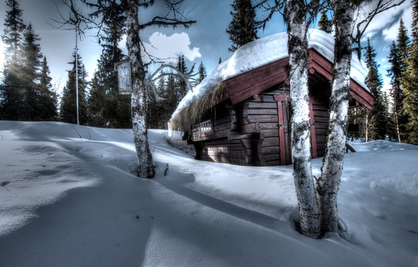 Картинка зима, лес, небо, облака, свет, снег, деревья, закат, ель, рога, береза, домик, сугроб