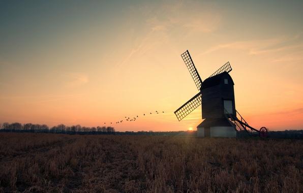 Картинка поле, солнце, закат, вечер, мельница, журавли