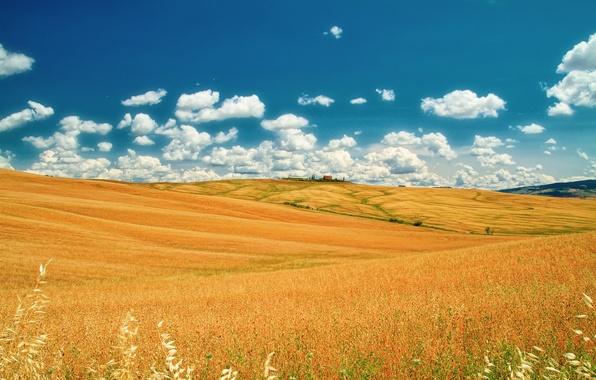 Картинка поле, лето, небо, облака, Италия, июнь, Тоскана