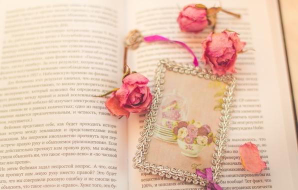 Картинка цветы, розы, лепестки, книга