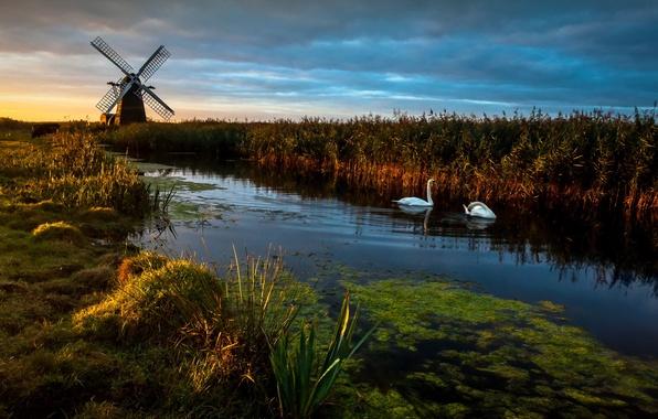 Картинка Landscape, Reflections, swans, Herringfleet Dawn, Wind pump, Windmill