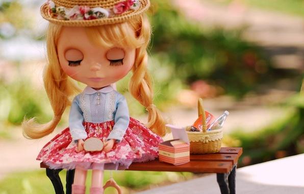 Картинка скамейка, игрушка, кукла, завтрак, косички, шляпка