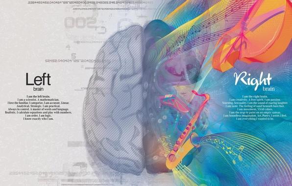 Картинка креатив, краски, наука, мозг, творчество, искусство, полушария, математика, логика, правое, левое, извилины, серое вещество, мышление, …