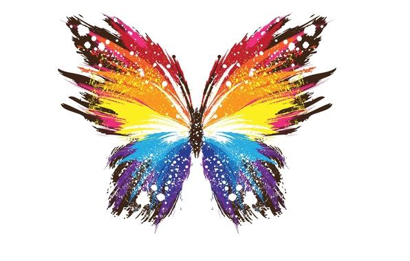 Картинка цвета, абстракция, фон, бабочка, крылья