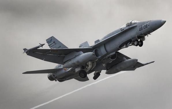 Картинка истребитель, многоцелевой, Hornet, FA-18A