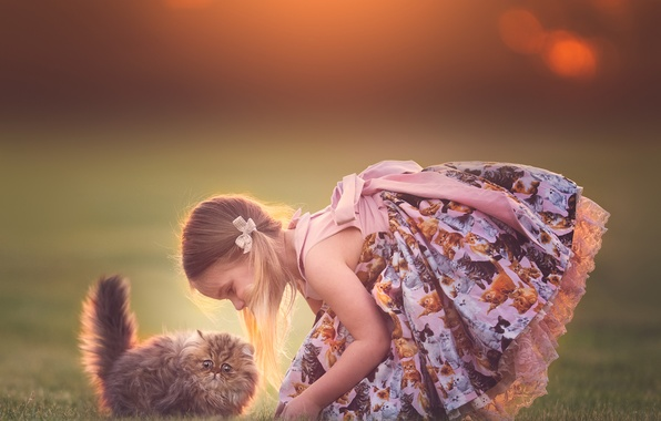 Картинка девочка, котёнок, друзья, сарафан