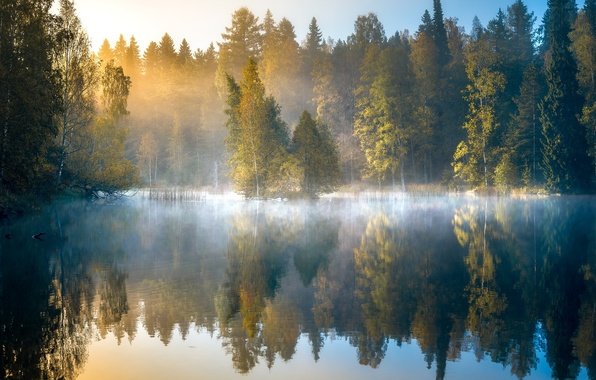 Картинка осень, лес, деревья, туман, озеро, отражение, рассвет, утро, Финляндия