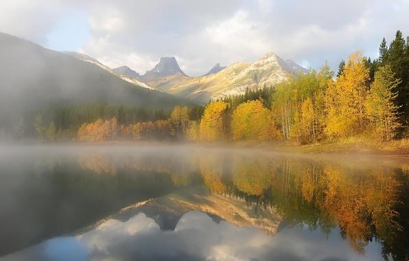 Картинка осень, лес, деревья, горы, природа, озеро, утро, дымка