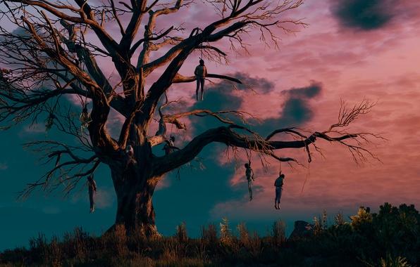 Картинка Ведьмак, The Witcher 3:Wild Hunt, дерево висельников