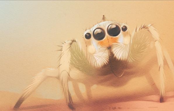 Картинка глаза, лапки, паук, арт