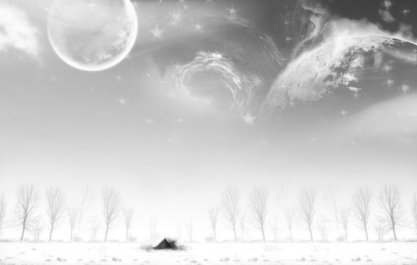 Картинка зима, Деревья