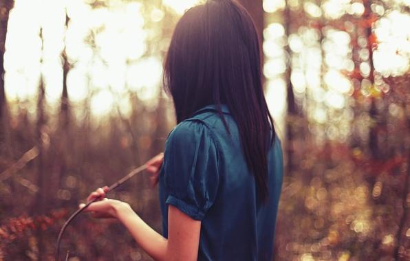 Картинка девушка, солнце, деревья, синий, природа, фон, обои, настроения, брюнетка, блузка, кофта