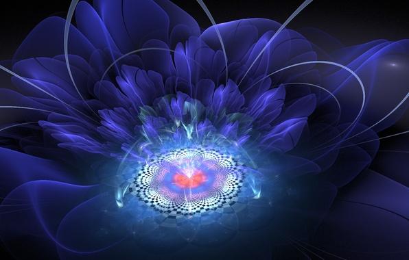 Картинка цветок, лучи, свет, абстракция, графика, фрактал