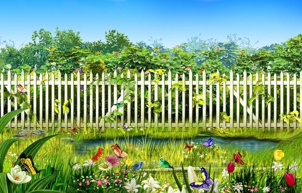 Картинка цветы, птицы, ручей, забор