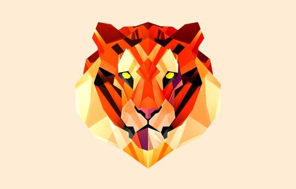 Картинка морда, тигр, фон, рыжий
